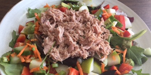 Speedy Tuna Salad